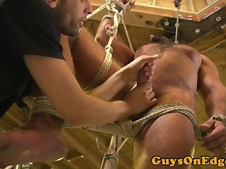 Tiedup bear edged and teased by young twink